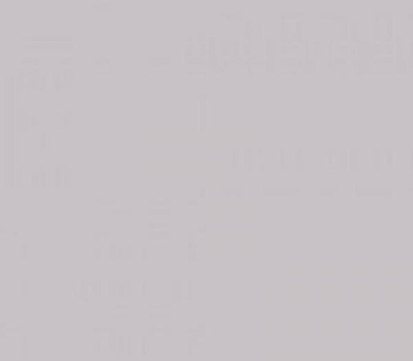 Multiblitz Hintergrund 1.35X11m grau BD150A2 - Frontansicht