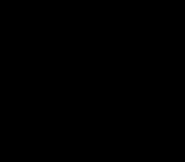 Multiblitz Hintergrund 1.35x11m schwarz - Frontansicht